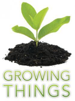 Soil clipart organic fertilizer