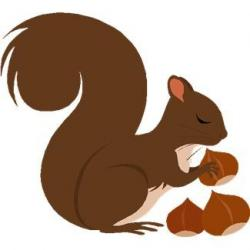 Gray Squirrel clipart acorn clipart