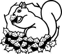 Drawn squirrel nut clipart