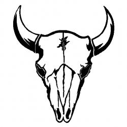 Bulls clipart bull skull