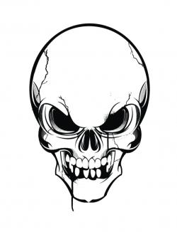 Ssckull clipart line art