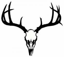 Ssckull clipart whitetail deer
