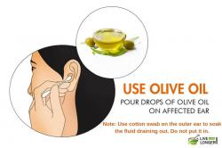 Olive Oil clipart ear