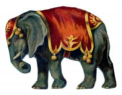 Camels clipart circus elephant