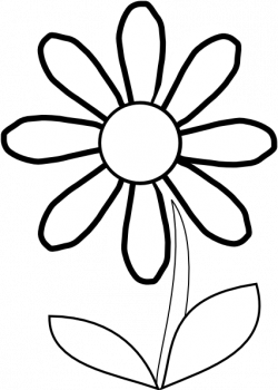 Chamomile clipart black and white