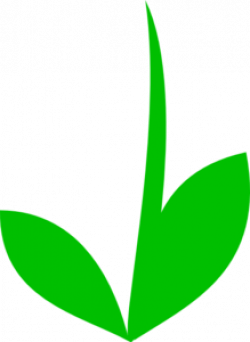 Stem clipart green stem