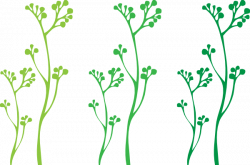 Stem clipart plant stem