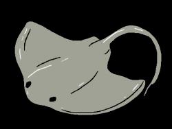 Stingray clipart transparent