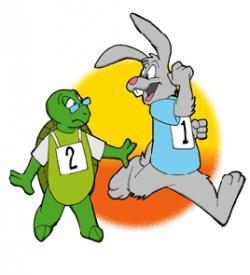 Hare clipart tortoise