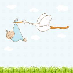 Stork clipart baby vector