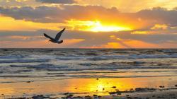 Caribbean clipart sunrise beach