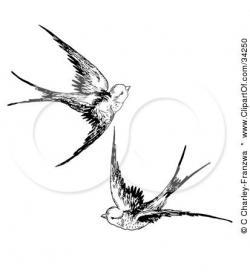 Drawn swallow plant