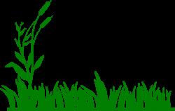 Grass clipart swamp