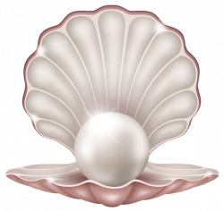 Clams clipart pearl