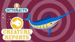 Swordfish clipart octonauts
