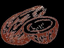 Coconut clipart election symbol