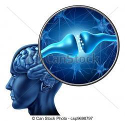 Synapse clipart Brain Clipart