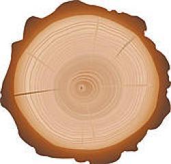 Stump clipart