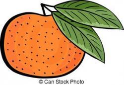 Mandarin clipart tangerine