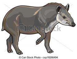 Tapir clipart Tapir Drawing