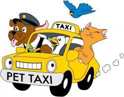 Taxi clipart australian