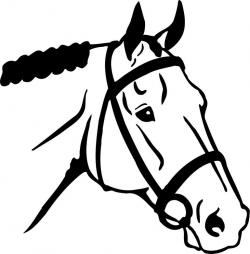 Stallion clipart drawing