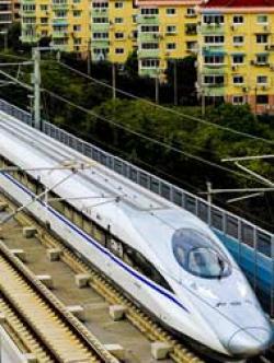 Tern clipart bullet train