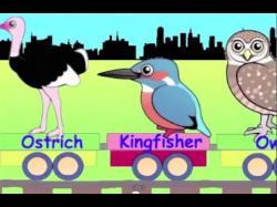 Tern clipart train cartoon