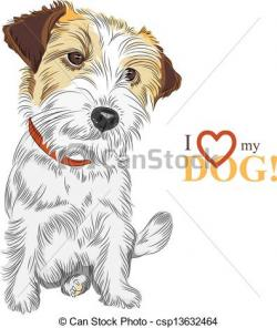 Jack Russell Terrier clipart drawing