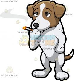 Jack Russell Terrier clipart little dog
