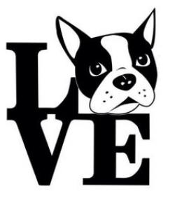 Boston Terrier clipart black and white