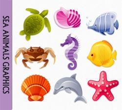 Dolphins clipart ocean animal