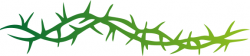 Thorns clipart vine