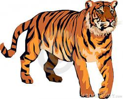 Bengal clipart angry tiger