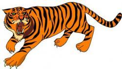 Bengal clipart orange tiger