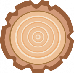 Timber clipart tree ring