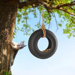Tire Swing clipart old tire