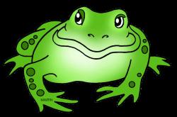 Bullfrog clipart amphibian