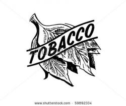 Cotton clipart tobacco