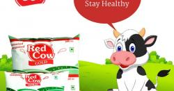 Tofu clipart red cow