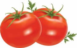 Cherry Tomato clipart transparent