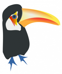 Toucanet clipart vertebrate
