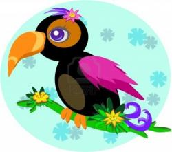 Toucanet clipart real animal