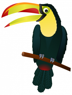 Toucan clipart cute
