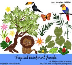Toucanet clipart rainforest butterfly