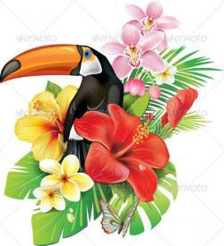 Toucanet clipart rainforest flower