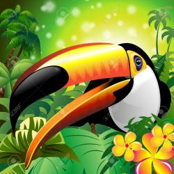 Jungle clipart flora and fauna