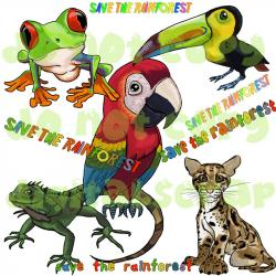 Toucanet clipart rainforest tree