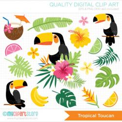 Toucanet clipart tropical bird