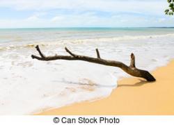 Tranquil clipart beach landscape